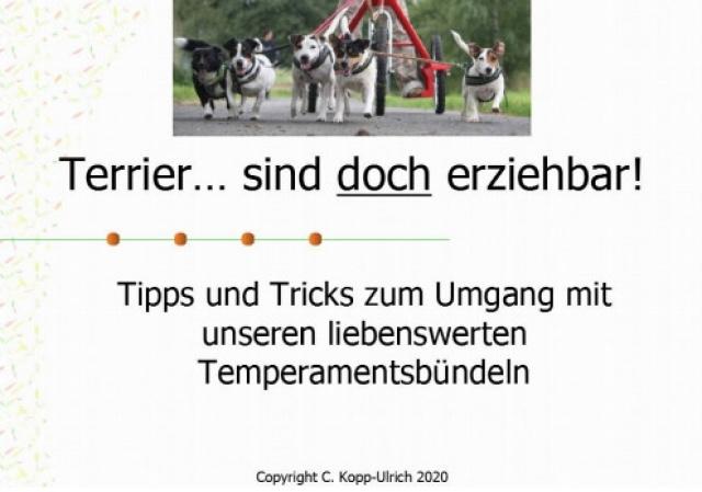 Claudia Kopp-Ulrich - Terrier ... sind DOCH erziehbar!